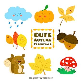 Elementos esenciales lindos de otoño