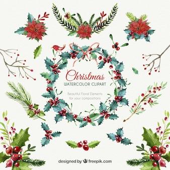 Elementos florales de Navidad