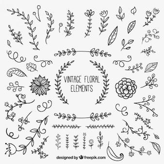 Elementos florales vintage