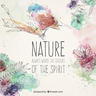 Elementos naturales dibujados a mano