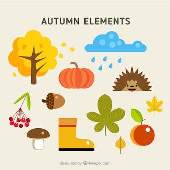 Elementos otoñales naturales