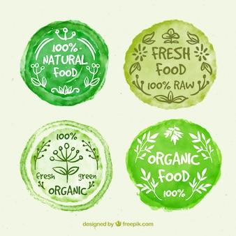Etiquetas de comida orgánica sobre manchas redondas de pintura