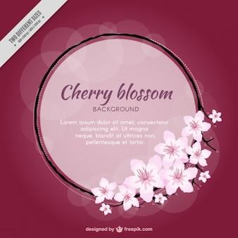 Flor de cereza con un fondo del círculo