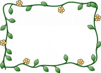 Flor marco