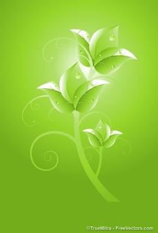 Flor verde con gotas de agua