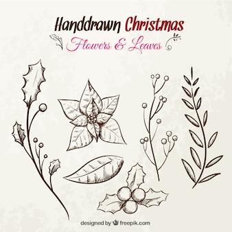 Flores de navidad y hojas dibujadas a mano