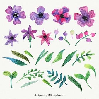 Flores moradas en estilo pintado a mano