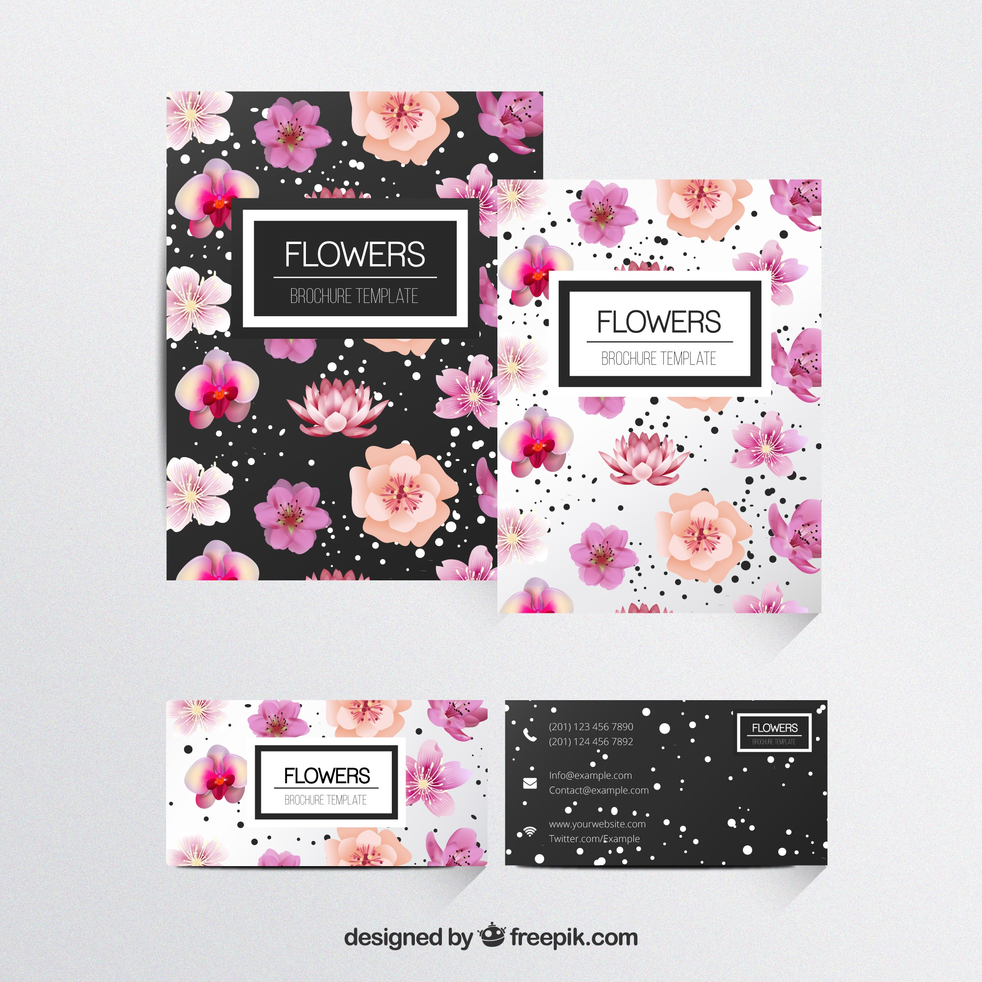 Flores plantilla de folletos