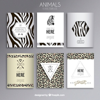 Folletos de estampado animal