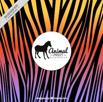 Fondo absracto de colores de zebra