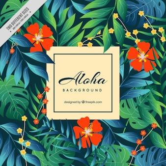 Fondo aloha con flores rojas