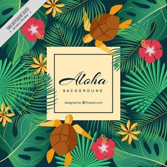 Fondo aloha con tortugas