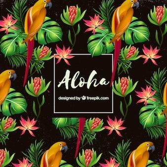 Fondo aloha patrón de loros