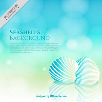 Fondo azul bokeh de conchas marinas