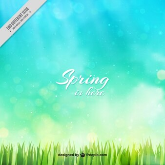 Fondo bokeh primaveral de césped