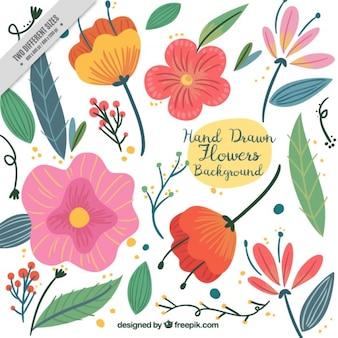 Fondo bonito con flores dibujadas a mano