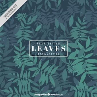 Fondo bonito de hojas