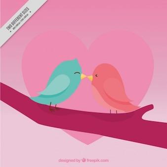 Fondo bonito de pájaros besándose para el día de san valentín