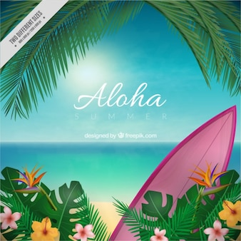 Fondo borroso aloha