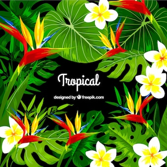 Fondo con diseño tropical