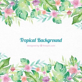Fondo con marco tropical