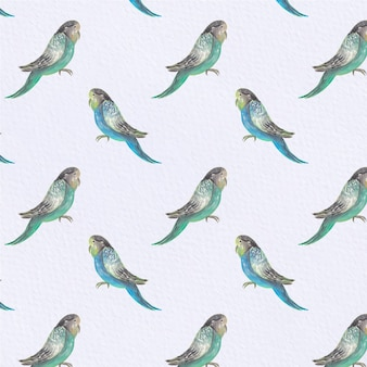 Fondo con patrón de pájaros
