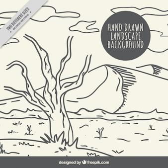 Fondo con un desértico árbol