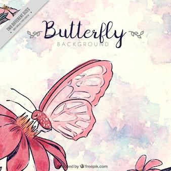 Fondo de acuarela con flor y mariposa