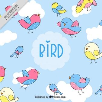 Fondo de adorables pájaros de colores dibujados a mano