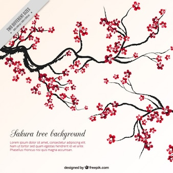Fondo de árbol de cerezo