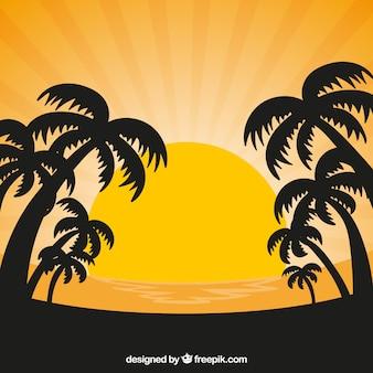 Fondo de atardecer con sol y siluetas de palmeras
