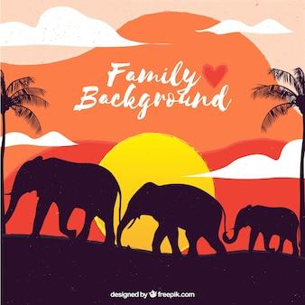 Fondo de atardecer de familia con elefantes