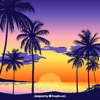 Fondo de atardecer en la playa con palmeras