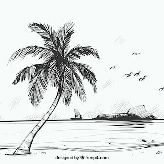 Fondo de boceto de playa con palmera