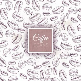 Fondo de bocetos de granos de café