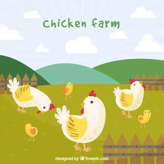 Fondo de bonitas gallinas y pollitos