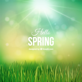Fondo de césped primaveral