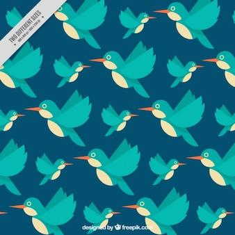Fondo de colibrí en diseño plano