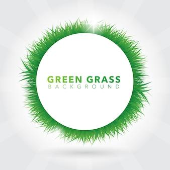 Fondo de corona de césped verde