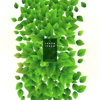 Fondo de diseño de hojas verdes