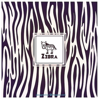 Fondo de estampado de Zebra