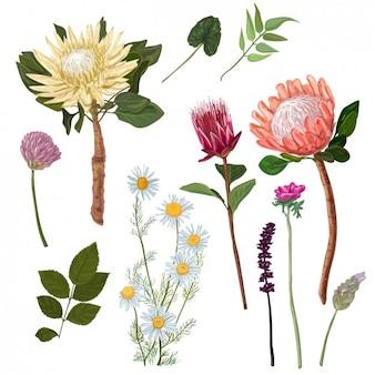 Fondo de flores de acuarela