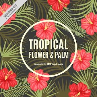 Fondo de flores tropicales y hojas de palmeras