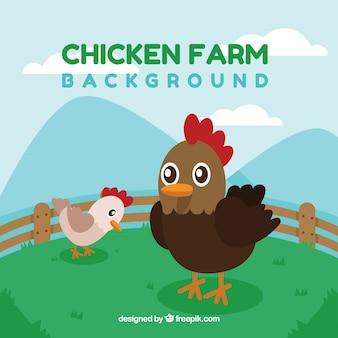 Fondo de gallina con pollito
