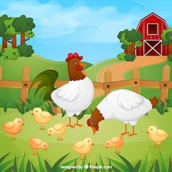 Fondo de gallinas con pollitos en la granja