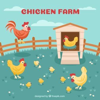Fondo de gallinas en el corral