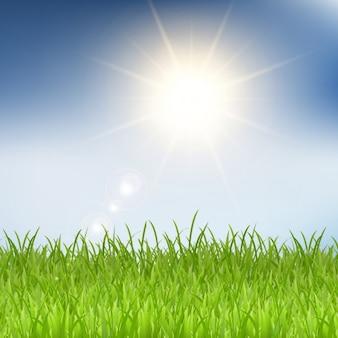 Fondo de hierba y rayos de sol