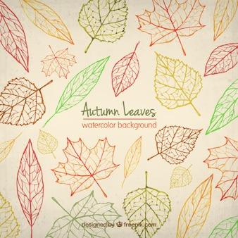 Fondo de hojas de otoño de acuarela