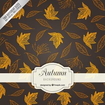 Fondo de hojas de otoño esbozadas