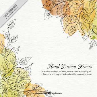 Fondo de hojas dibujadas a mano con manchas de acuarela